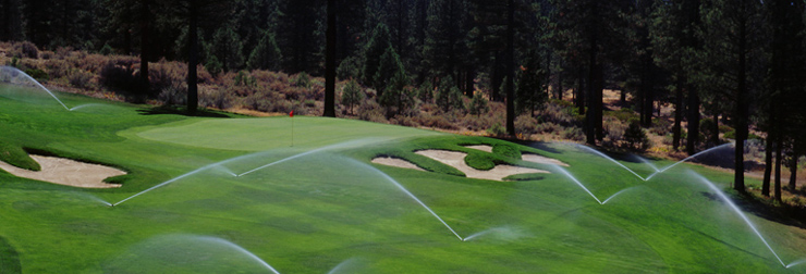 golfplya1.jpg