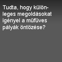 mufuves.jpg